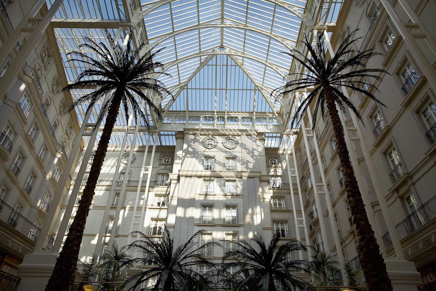 palms in the landmark hotel