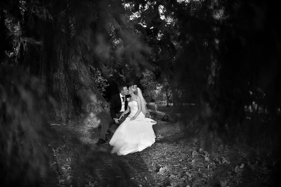 romantic wedding photo session of Emma and Matt in berkshire's park