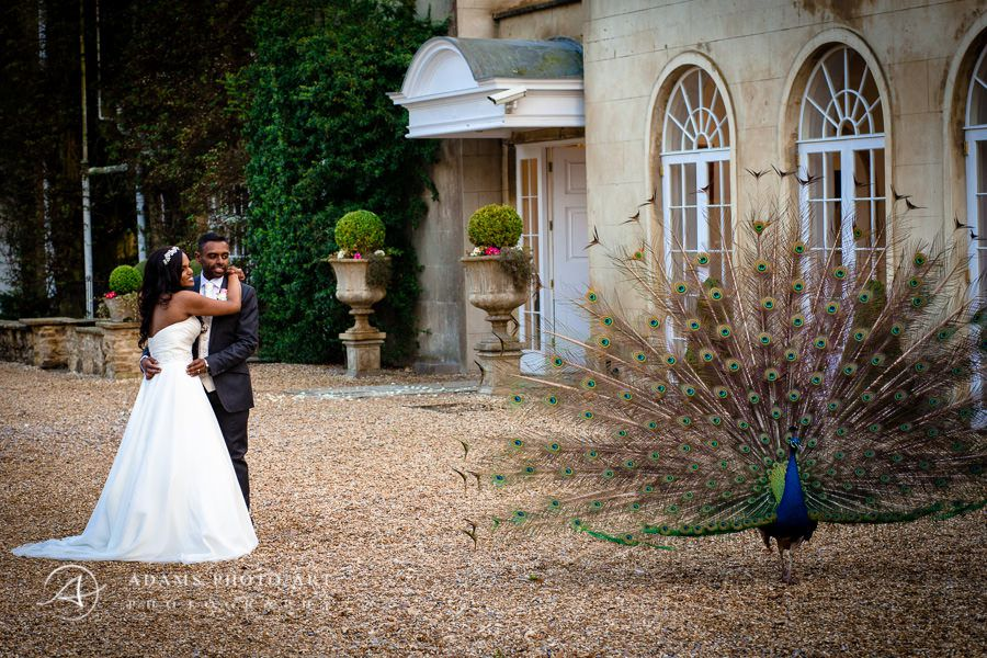 Northbrook Park Wedding Photographer photo session in northbrook park london