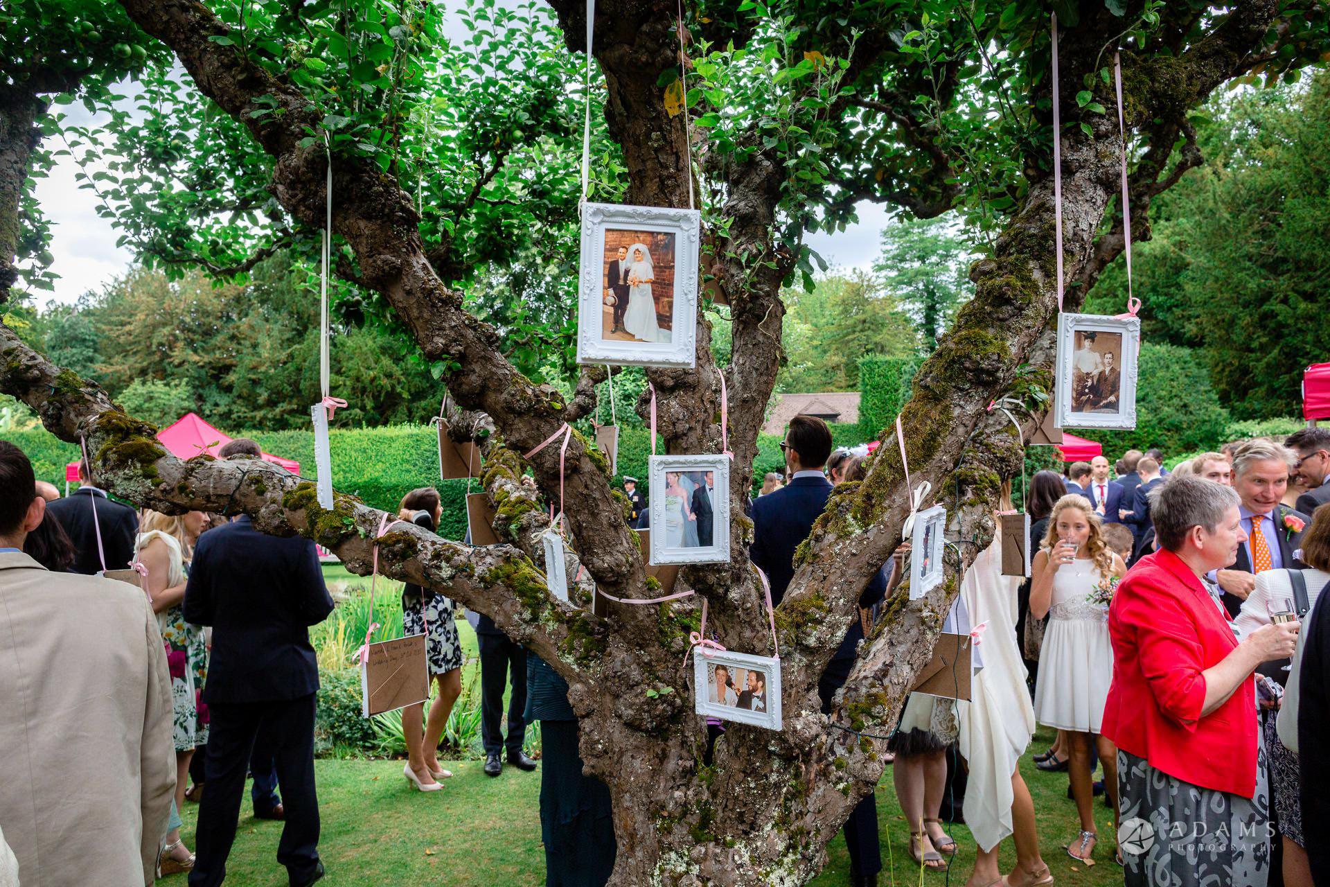 Clare College wedding photos f tree with photos