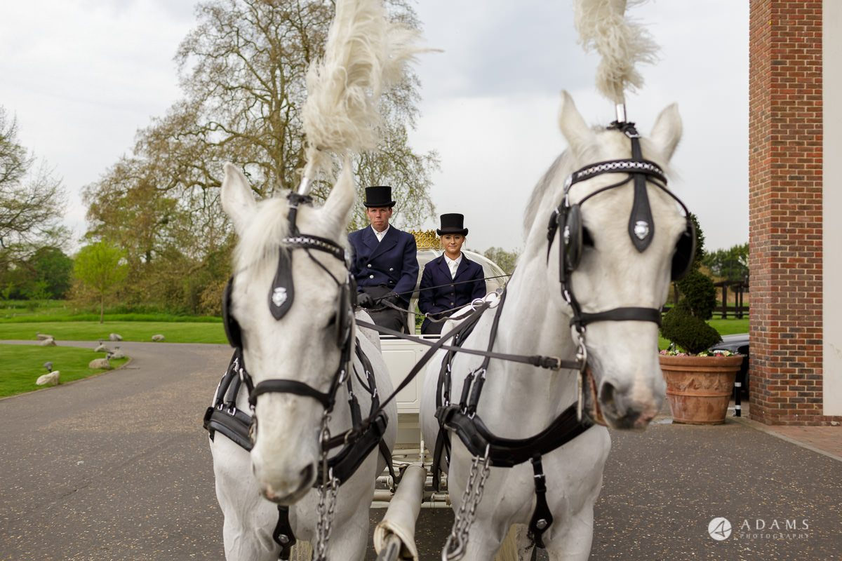 syon park house wedding photographer horses waiting