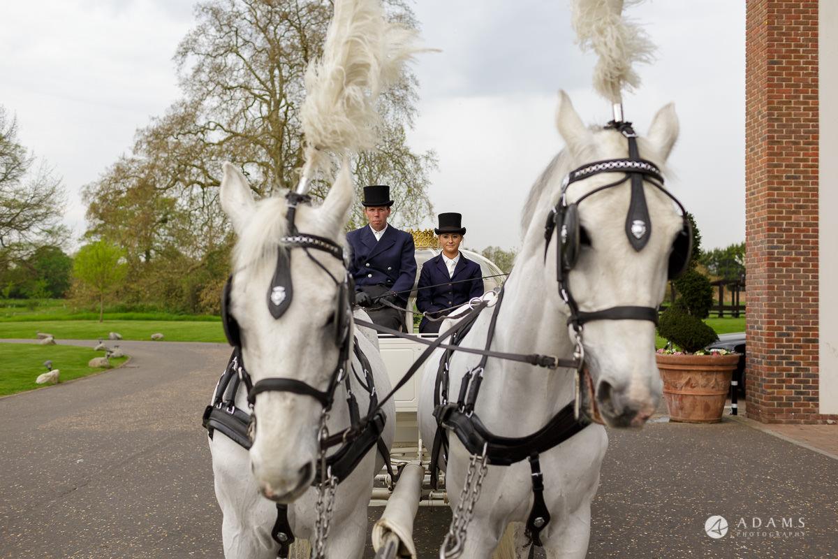 syon park house wedding photographer horses waiting