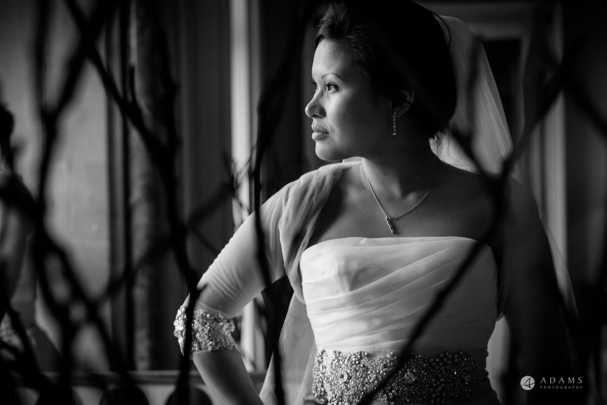 St Audries Park wedding bridal portrait