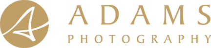 Adams Wedding Photography Logo Mobile